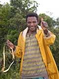 IELTS test in Papua New Guinea
