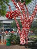 IELTS test in Singapore